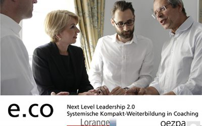Executive Business Coaching – Next Level Leadership 2.0